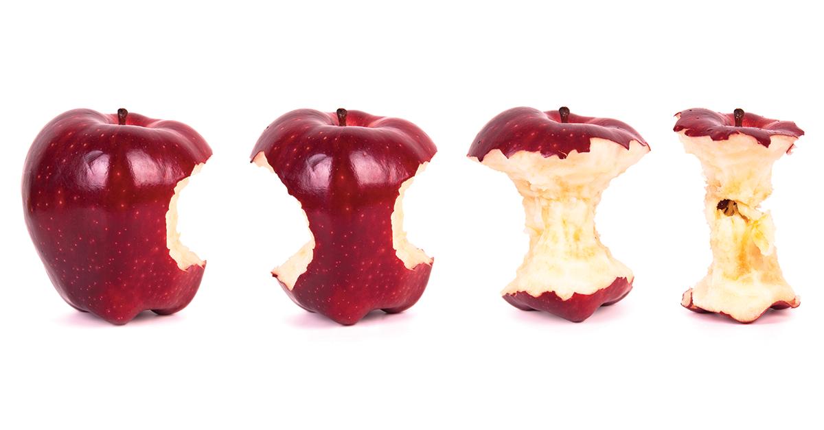 картинка огрызка от яблоками свое время она