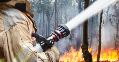 Firefighter putting out bush fire
