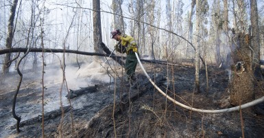 CUPE National Disaster Relief Fund – Wildfires in Northern Alberta