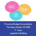 Have Your Say Manitoba provincial budget consultations