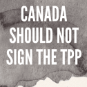 Canada should not sign the TPP